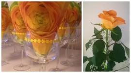 Servietti ja ruusu