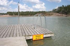 Melliläjärven järvisyyhyn aiheuttajat viihtyvät huonoimmin alueilla, joilla ei ole vesikasvillisuutta.