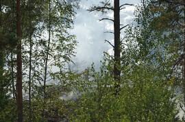 Maastoa paloi noin puolen hehtaarin alueelta. Kuva: Simo Päivärinta