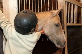 Suomen Ratsastajainliiton, Hope-yhdistyksen sekä tallien ja seurojen yhteistyö antaa myös vähävaraisten perheiden lapsille mahdollisuuden tutustua tallielämään ja ratsastusharrastukseen.