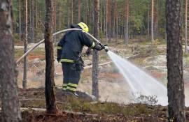 Tervaskannonmäessä paloi parikymmentä neliötä maastoa. Kuva: Simo Päivärinta