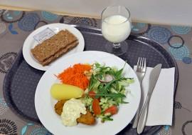Maistuisiko sitruunainen turskaleike, perunat, kermaviilikastike, raaste ja salaatti? Ammattikeittiöosaajat ry:n myöntämä Kouluruokadiplomi todistaa, että kyllä maistuu. Kuva: Özkan Inhanli