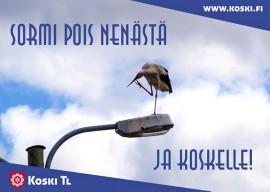 Mainoskorttiin mahtuu myös huumoria. Kortin haikarakuvan on ottanut Janne Ketola.