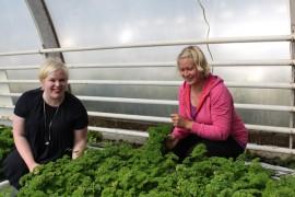 Kansanedustaja Annika Saarikko tutustui yrittäjä Satu Onnelan opastuksella Kivilän puutarhan reheviin persiljaviljemiin.