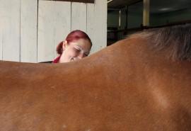 Sari Holmströmin mukaan ratsastusta voi harrastaa monella tapaa. Yhden tavoitteena on menestyminen kilpailuissa, toinen haluaa vain hetkeksi irti arjesta.