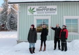 Ville ja Virve Virtanen (oik.) näyttävät Nuorkauppakamarin viimevuotiselle puheenjohtaja Anna-Mari Alkiolle ja Annukka Tolkille, mistä päin HamppuFarmin hamppupellot kesällä löytyvät.