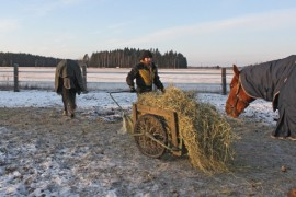 Pakkanen pitää Auran Kirkonkulman Ratsutallin yrittäjän Susanna Koiviston normaaliakin kiireisempänä. Hevonen  tarvitsee pakkasella reilusti heinää pysyäkseen lämpimänä.