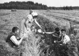 Kuvan kahvihetki on ikuistettu Liedossa vuonna 1960. Kuva: Juha Vuorelan arkisto