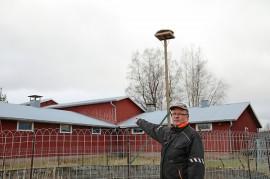 """Jukka Tähkiö odottaa pystyttämäänsä pesään asukkaita. Ulkorakennukseen hän on tehnyt """"lintutornin"""", josta uusia naapureita voisi tähystellä."""