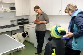 Pimu-koira pääsi ensimmäisten joukossa eläinlääkäri Anne Saarisen vastaanotolle Marttilassa. Pimun toivat rokotuksille Sirpa ja Pauli Aalto.