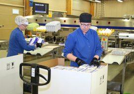 Anne Lähteenoja ja Riina Kankare pakkasivat keskiviikkona munia Oripään pakkaamossa, jossa on viikoittain pakattu kolme miljoonaa kananmunaa.