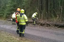 Kaatuneita puita korjattiin Marttilassa Simalantiellä lauantaina kahdesti. Kuva: Simo Päivärinta.
