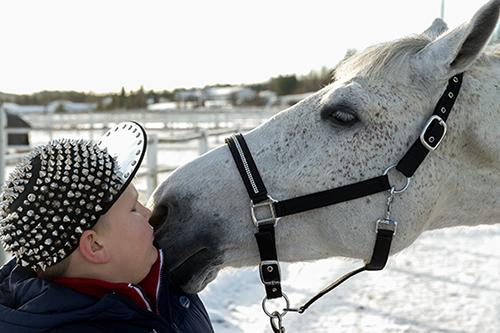 Korumies Arvi osti hevosen. Niittilakkinen, sanavalmis Arvi Martikainen on tullut laajalti tunnetuksi valmistamistaan koruista. 11-vuotias korumies Arvi on nyt myös hevosen omistaja. Hevonen löytyi Salosta, Pekka Larsenin tallista. Arvi osti hevosen itse ansaitsemillaan rahoilla. – Tää on vaan niin siistii. Fiilikset ovat törkeen hyvät. Mutta kyllä mua jännittää tosi kovin, en ole koskaan aikaisemmin ostanut hevosta, Arvi sanoo. KoruMies Arvi Tmi:n Facebook-sivustolla on jo liki 18 000 tykkääjää. Arvi pyysi faneiltaan apua uuden hevosensa kutsumanimen keksimisessä. Nimikilpailuun tuli yli 1200 nimiehdotusta, joiden joukosta Arvi valitsi nimeksi Valkon. Kuva: Marko Mattila, Salon Seudun Sanomat.