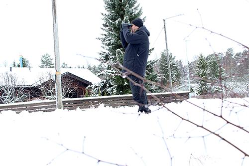 Sama reitti jo vuosikymmeniä. Veijo Pietilä on laskenut talvilintuja Kaarinassa vuosikymmeniä. Ensi vuonna tulee 50 vuotta täyteen. Pietilä ja Esko Gustafsson loivat 12 kilometrin reitin mopoiässä ja käyvät edelleen kolme kertaa talvessa laskemassa reitin varrella näkyvät linnut. Miehet asuvat nykyään muualla. Harvinaisuuksia reitin varrella ovat olleet vuonna 1970 nähty valkoselkätikka ja vuonna 1972 havaittu lapintiainen. Nora Rajalin, Kaarina-lehti.