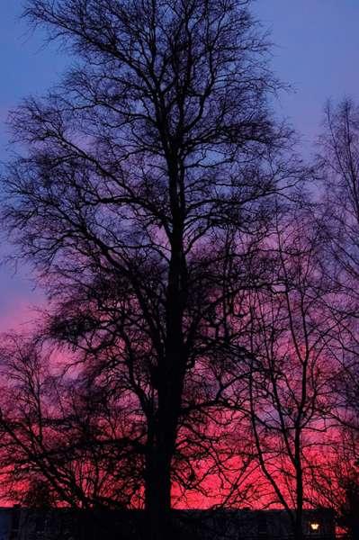 Esko Lindellin kuva on Salosta. Kuvassa taivaalla näkyy auringonlaskun värikirjoa.